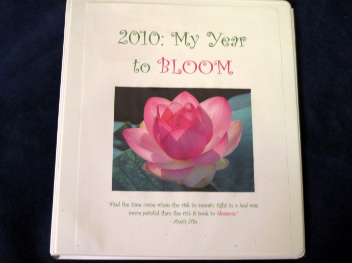 The front cover of my 2010 Guidebook.