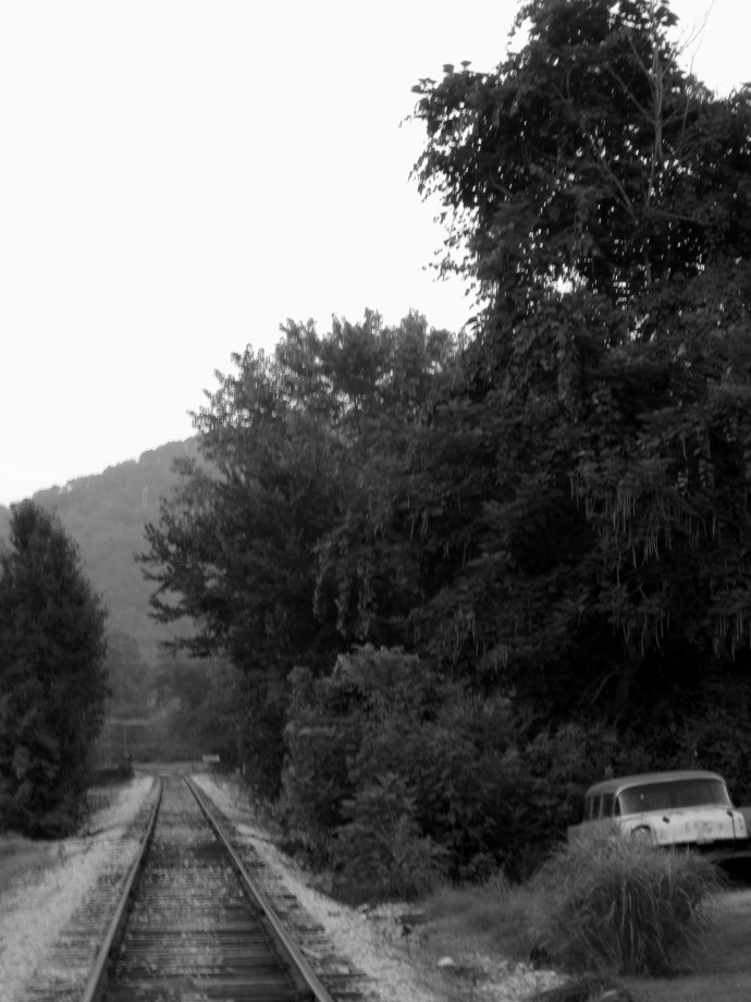 Tracks. Overgrowth. Old car. Taken with Canon PowerShot A 1100 IS. Edited in Picasa.