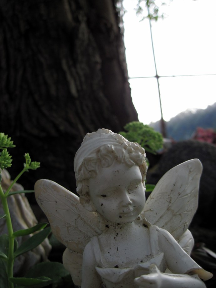 Fairy figurine in the front lawn. Taken 8/22/2010 with Canon PowerShot A 1100 IS, Portrait mode, macro setting.