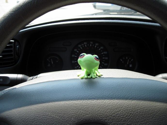 Frieda, sitting on my steering wheel outside the Dollar General where I bought her.