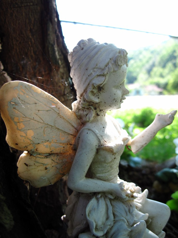 Fairy, sunshine, stillness.