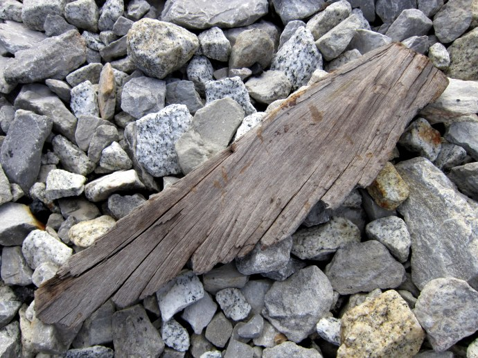 Wood, found on railroad tracks, which looks to me like an angel's wing. 12/4/2011. Canon A 3300 IS.